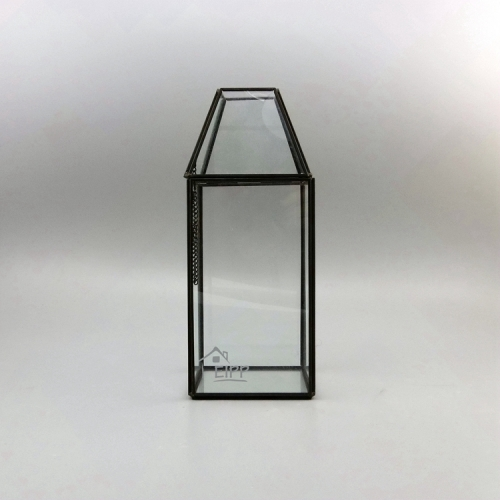 Geometric Glass Hanging Plant Box Terrarium with Different Shape Size and Color to Choose